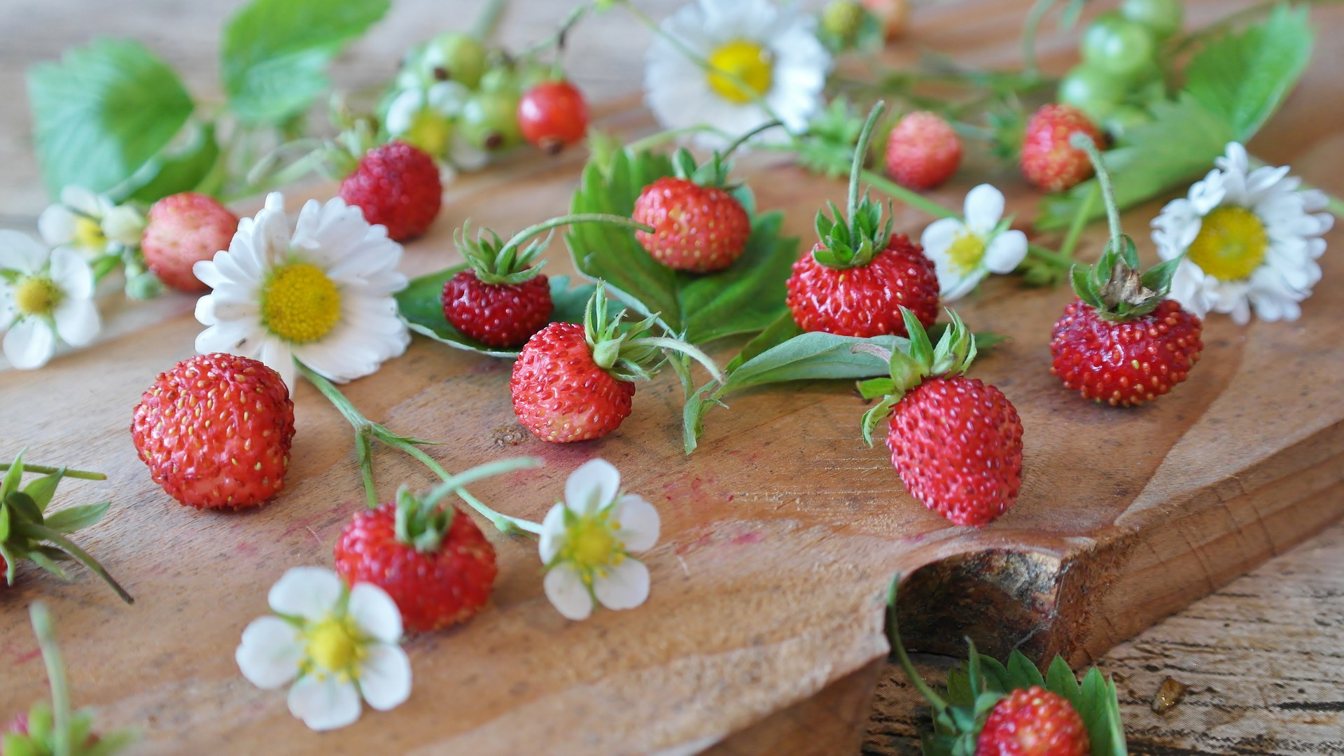 Strawberries are a favorite summer fruit. Yet store-bought berries can't come near the intense and fresh flavor of those picked right off the vine from your very own garden.