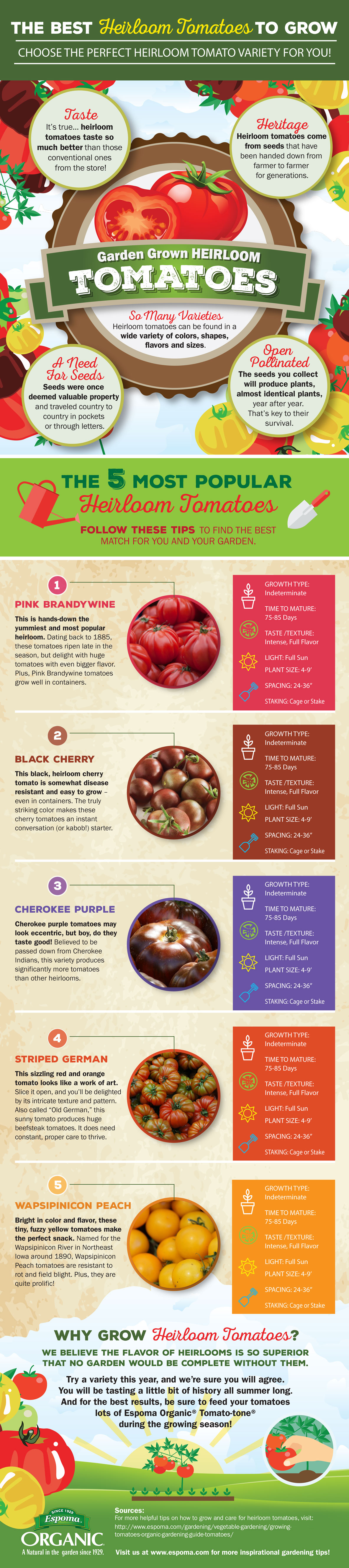 The Best Heirloom Tomatoes to Grow | Espoma